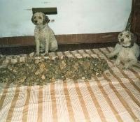 rick-con-sua-sorella-1985
